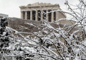Δείτε τα 5 πιο αστεία βίντεο από τη χιονισμένη Ελλάδα  - Κεντρική Εικόνα