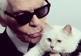 H γάτα του Karl Lagerfeld πενθεί και ντύθηκε στα μαύρα [εικόνα] - Κεντρική Εικόνα