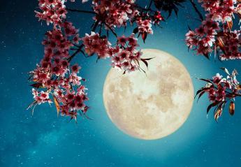 Οι αστρολογικές προβλέψεις της Δευτέρας 25 Μαρτίου 2019 - Κεντρική Εικόνα