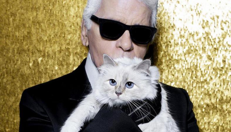 Τι θα απογίνει η διάσημη γάτα του Karl Lagerfeld;  - Κεντρική Εικόνα