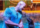 O The Rock πήγε σε ένα ενυδρείο και βρήκε τον μπελά του στο Instagram [βίντεο] - Κεντρική Εικόνα