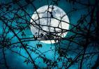 Η Πανσέληνος του Οκτωβρίου θα φέρει εντάσεις και θα επηρέσει όλα τα ζώδια - Κεντρική Εικόνα
